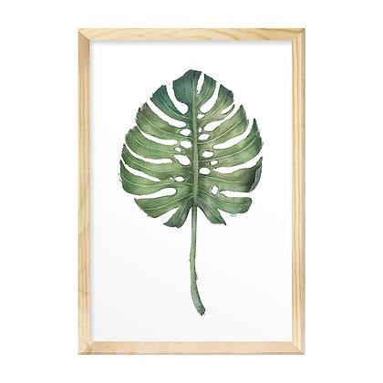 Quadro Moldura Pinus - Monstera