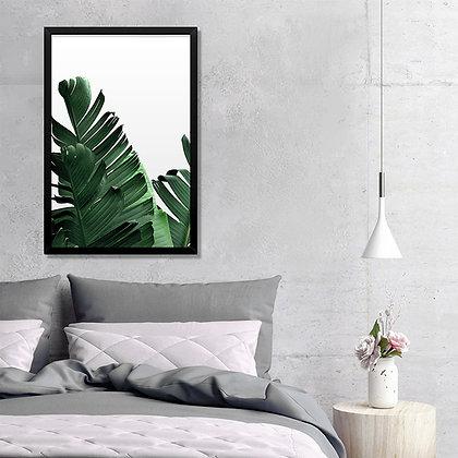 Quadro Folhas Bananeira