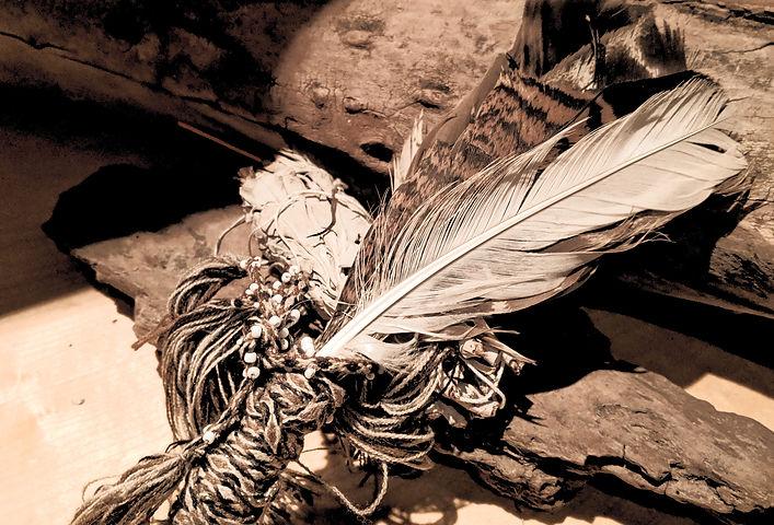 feathers3_edited.jpg