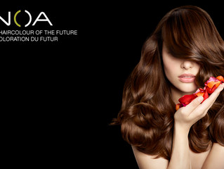 INOA Color Line at Stile Salon