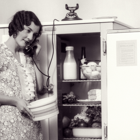 The Icebox Cometh: How Capitalism Brought Luxury to Everyone