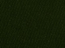 646/645-168 Forestry Green Elastique Fabric