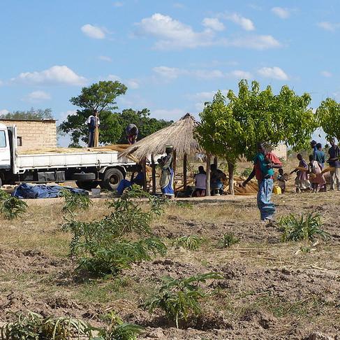 Zambia's Cholera Outbreak: A Grim Reminder That Corruption Kills
