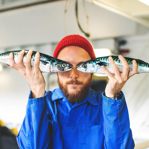 Innovation and Capitalism Means Icelanders Turn $12 Cod into $3,500 Worth of Products
