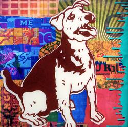 Drip dog