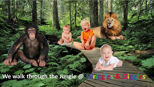 walking through the jungle picture.jpg