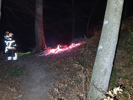 Brandschutztipps - Waldbrandgefahr