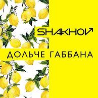 SHAKHOV - Dolche Gabbana - CoverArt.jpg