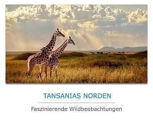Tansania Private Safari im Norden