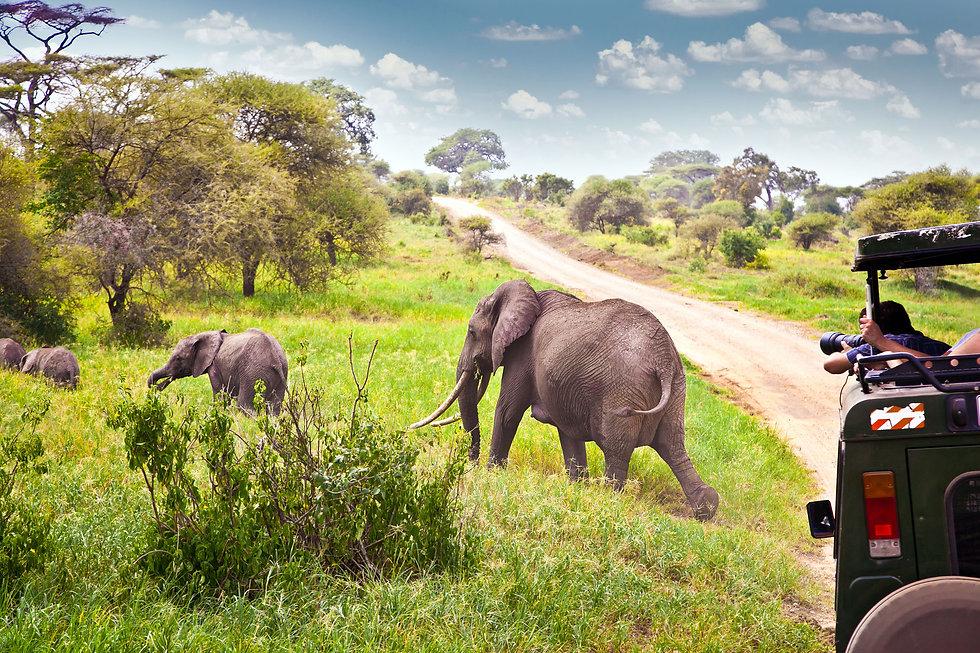 Afrika_Reisen.jpg