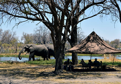Botswana_Private Safaris.jpg