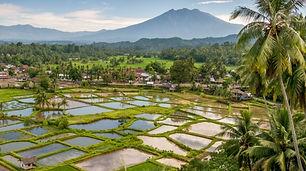 Sumatra Privatreisen klein.jpg