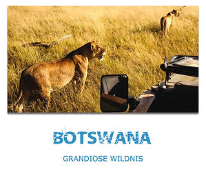 Botswana Private Safaris