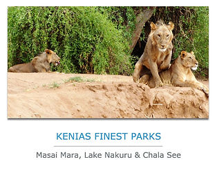 Kenia Privatreisen Nationalparks