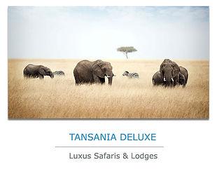 Tansania Luxus Safari