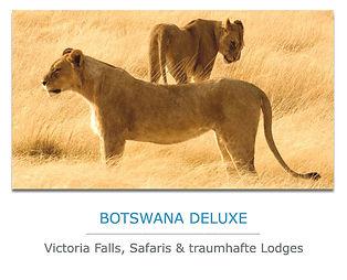 Botswana Luxus Safaris
