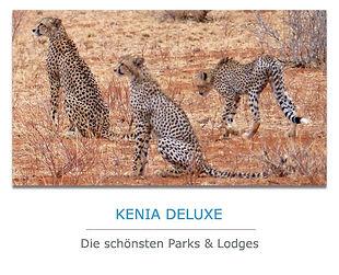 Kenia Luxus Safaris