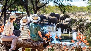 Tansania Familien Safaris_klein.jpeg