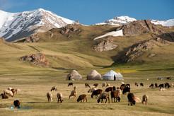 5 Kirgistan Reisen.jpg
