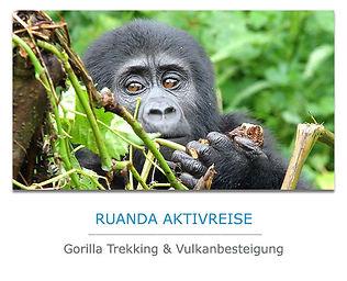 Ruanda Privatreise mit Gorilla-Tracking