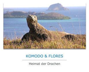 Komodo-Flores-Privatreise.jpg