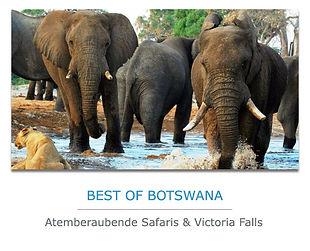 Botswana Private Safari mit Victoria Falls