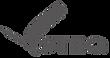 logo steq.png