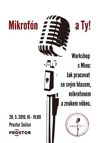 Mikrofón_a_Ty_workshop_(2).jpg