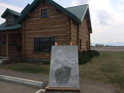 Graphic Concrete Bison Panel