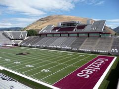 Washington Grizzly Stadium