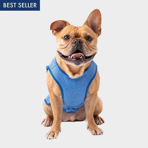 GF PET® ICE VEST® Cooling Vest for Dogs