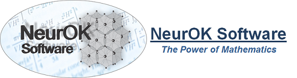 NeurOK Software