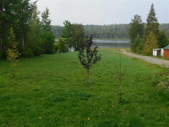 Long Lake.jpg