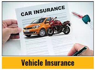 Vehicle Insurance.png