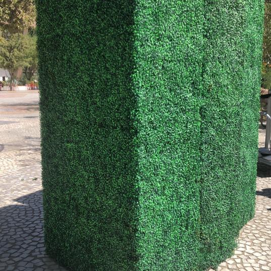 Grass Walls