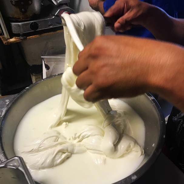 making fresh mozzerella