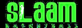 SLAAM logo_edited.png