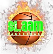Slaam fire logo2.png
