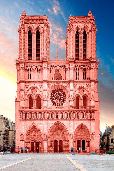 Notre Dame 20x30.jpg