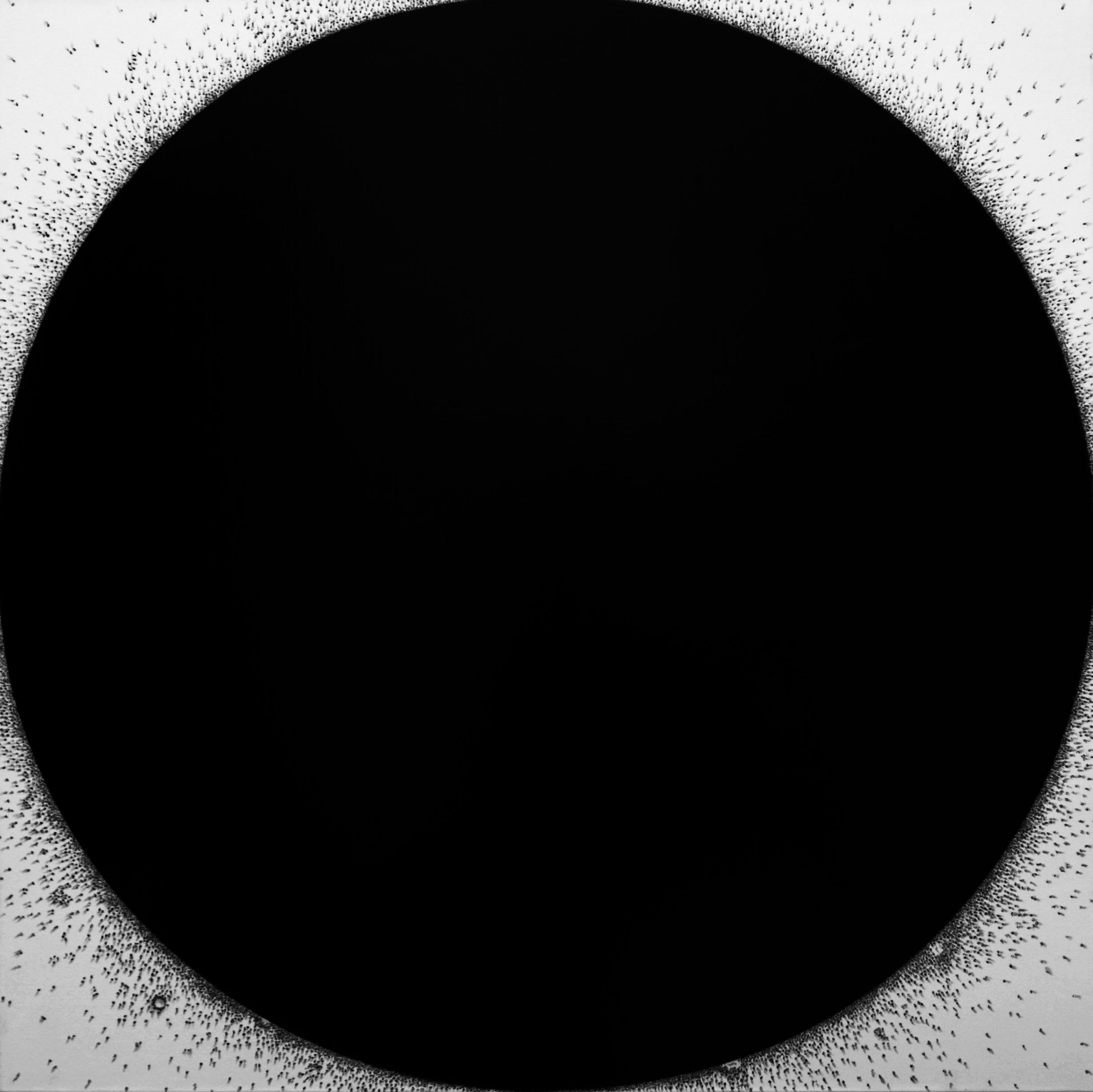 Black Spot Oil on Canvas 120 x 120 cm 47