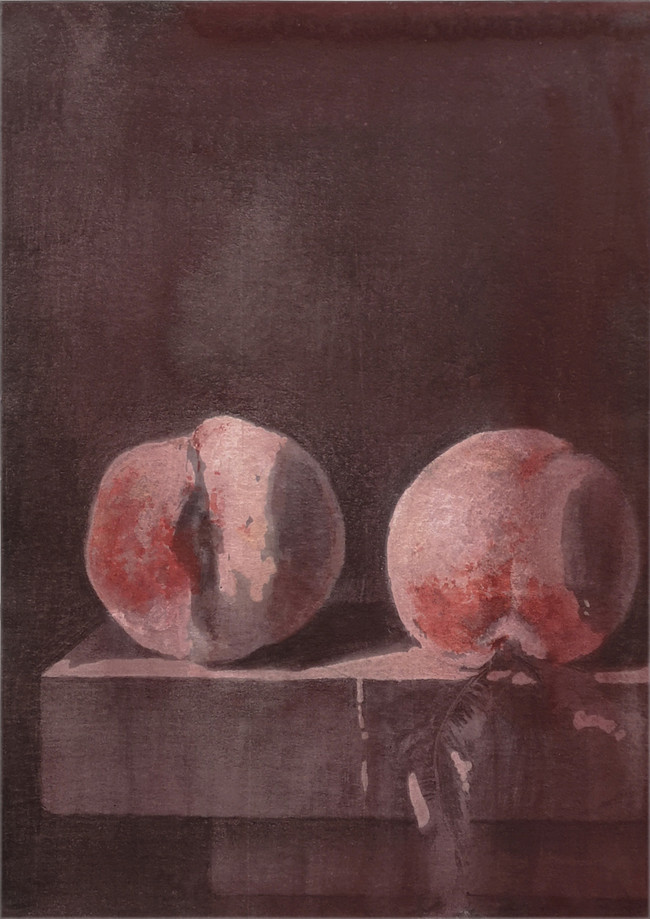 Peaches, pencil and gouache on paper, 21x14.9cm, from the Tender series