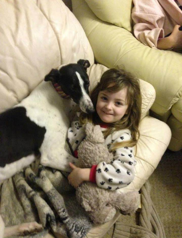 Can the dogs live happily with children?