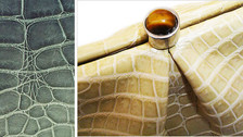 Distinquishing Between Crocodile & Alligator Skin