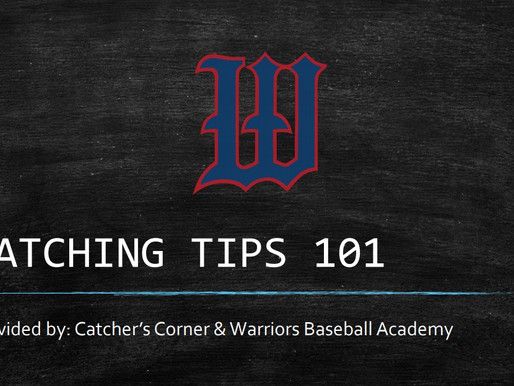 """FREE """"Catching Tips 101"""""""