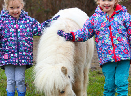 10 reasons why you should get your kids involved with horses