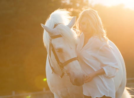 10 reasons horses are better than boys
