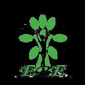 EBE | Evoluzione Benessere Estetico | Centro Estetico Seregno