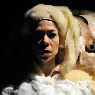 Dolly the Sheep, 2009