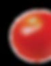 tomate1©-goir_salade-Fotolia.png