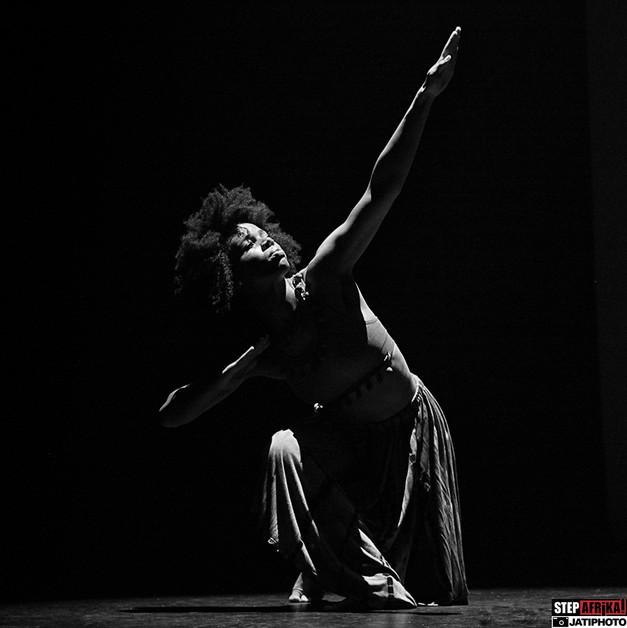 StepAfrika! Gala Performance, Washington, D.C. 2015